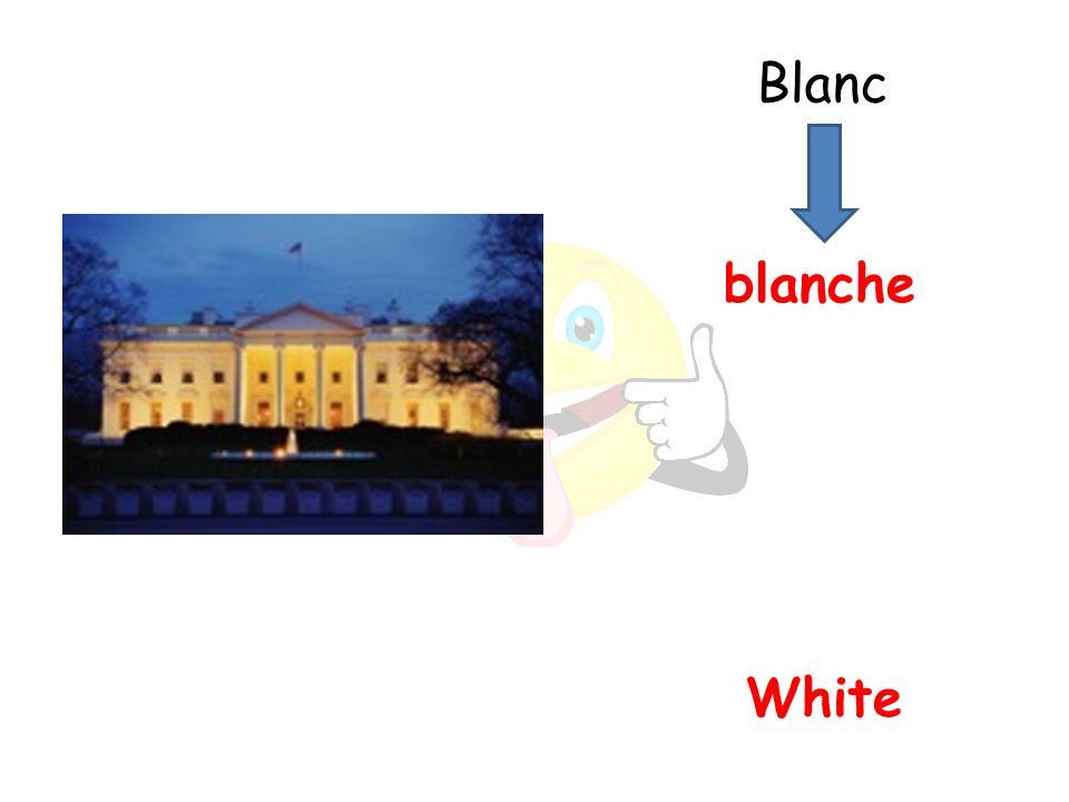 White blanche Blanc