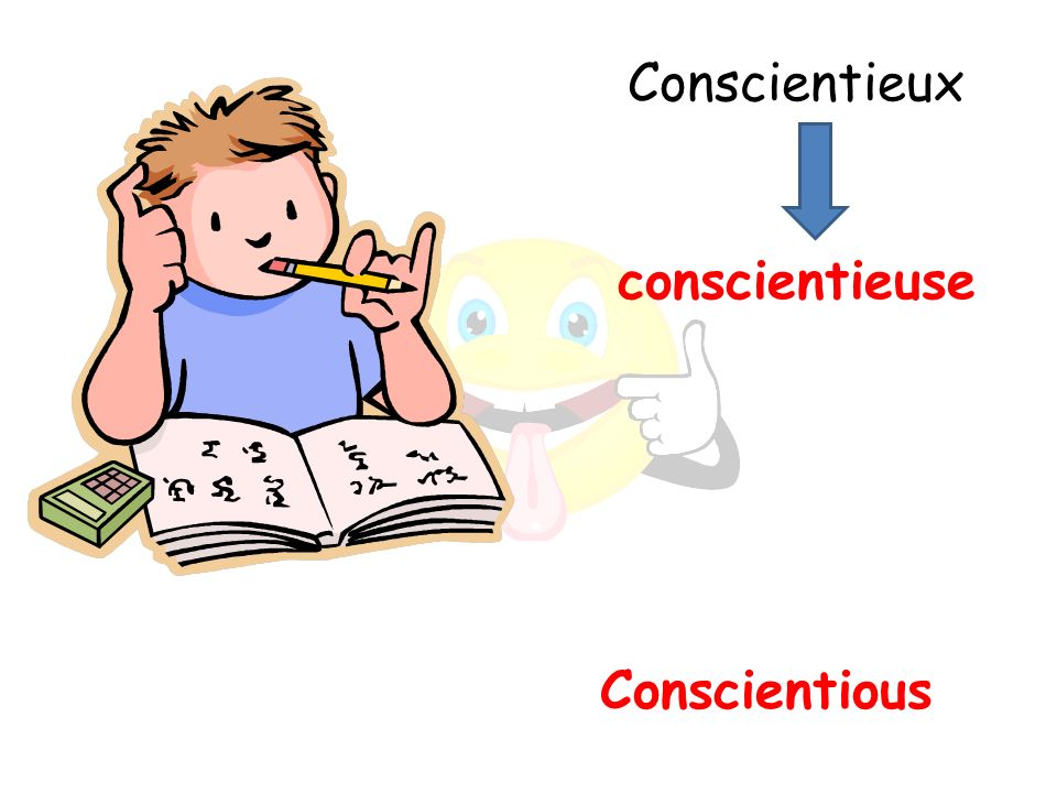 Conscientious conscientieuse Conscientieux