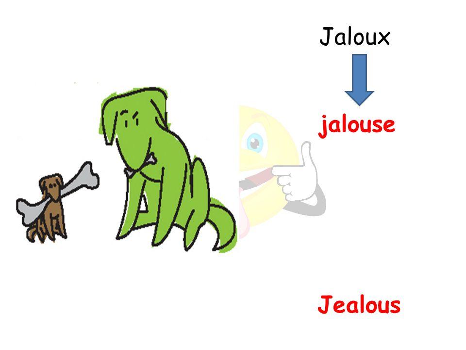 Jealous jalouse Jaloux