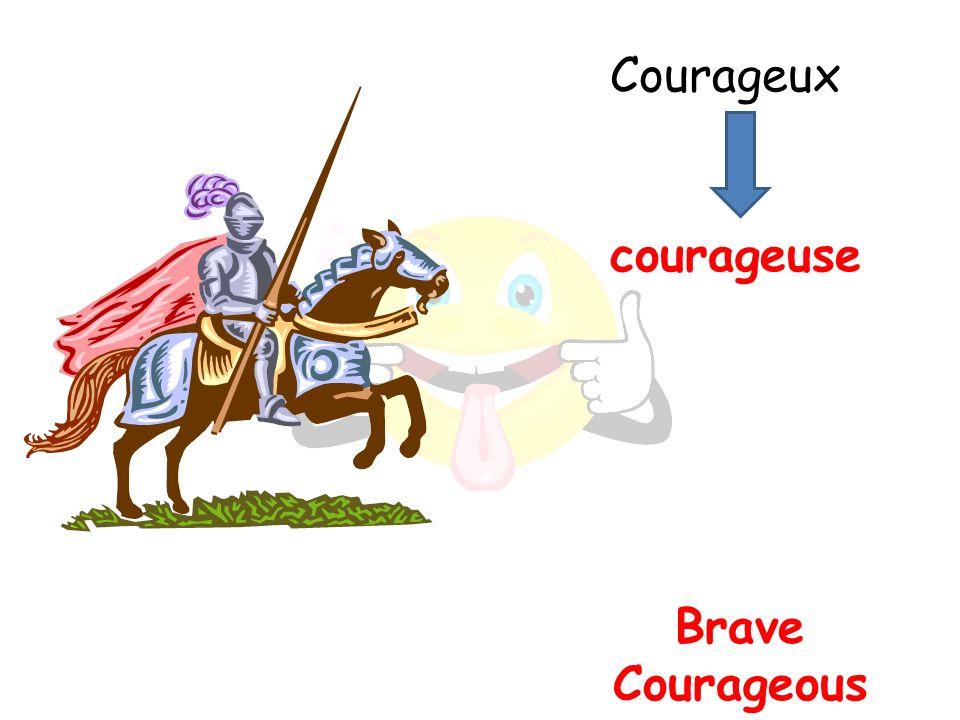 Brave Courageous courageuse Courageux