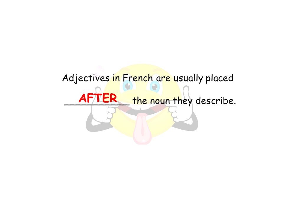 AFTER Adjectives in French are usually placed ___________ the noun they describe.
