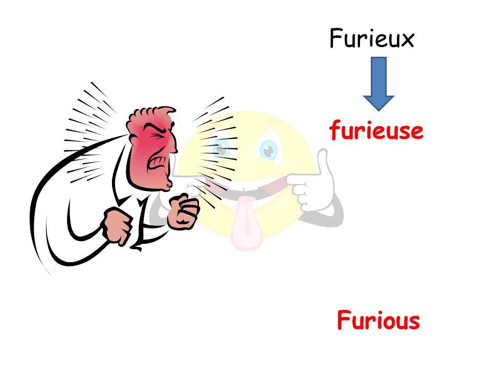 Furious furieuse Furieux