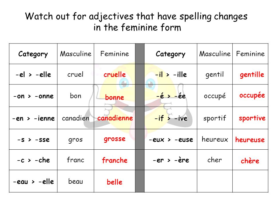 Watch out for adjectives that have spelling changes in the feminine form CategoryMasculineFeminineCategoryMasculineFeminine -el > -ellecruel-il > -ill