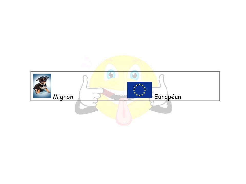 Mignon Européen