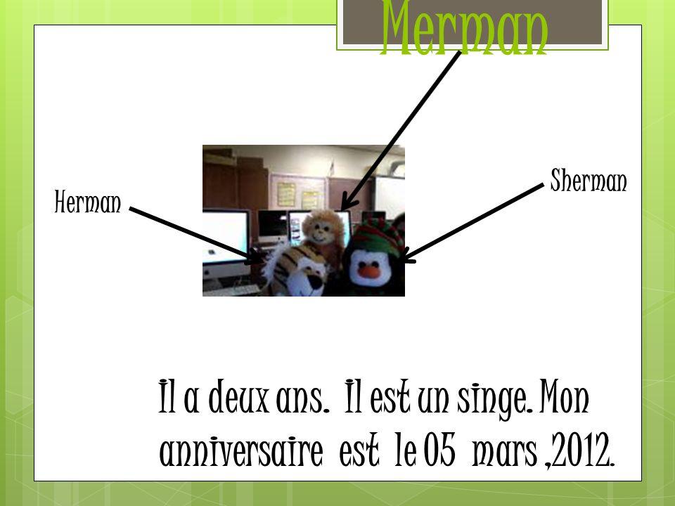 Merman Il a deux ans. Il est un singe. Mon anniversaire est le 05 mars,2012. Herman Sherman