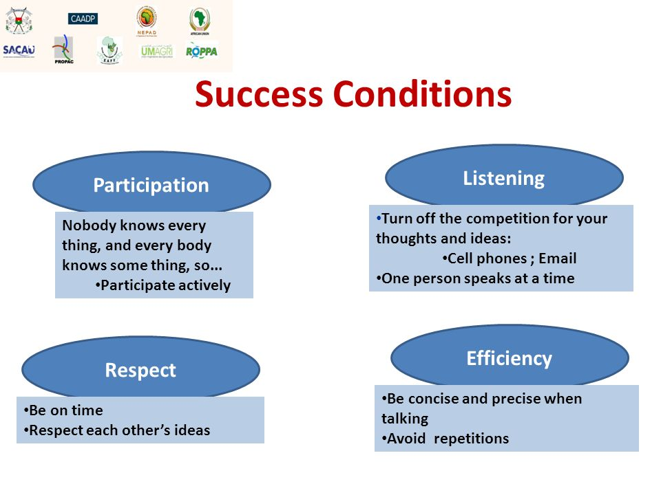 Success Conditions Listening Turn off the competition for your thoughts and ideas: Cell phones ; Email One person speaks at a time Efficiency Be conci