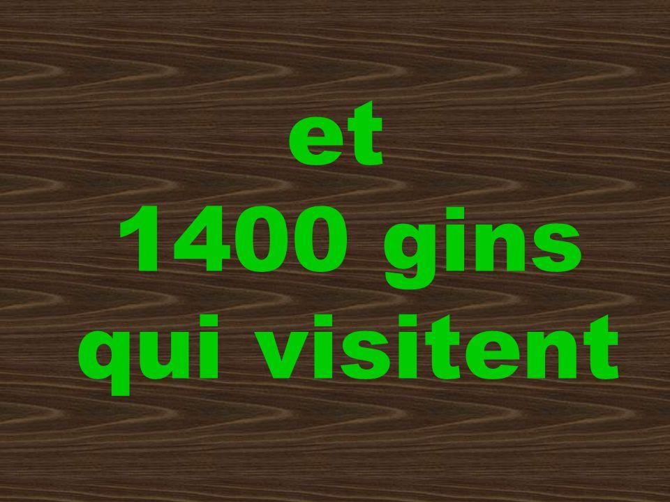 et 1400 gins qui visitent