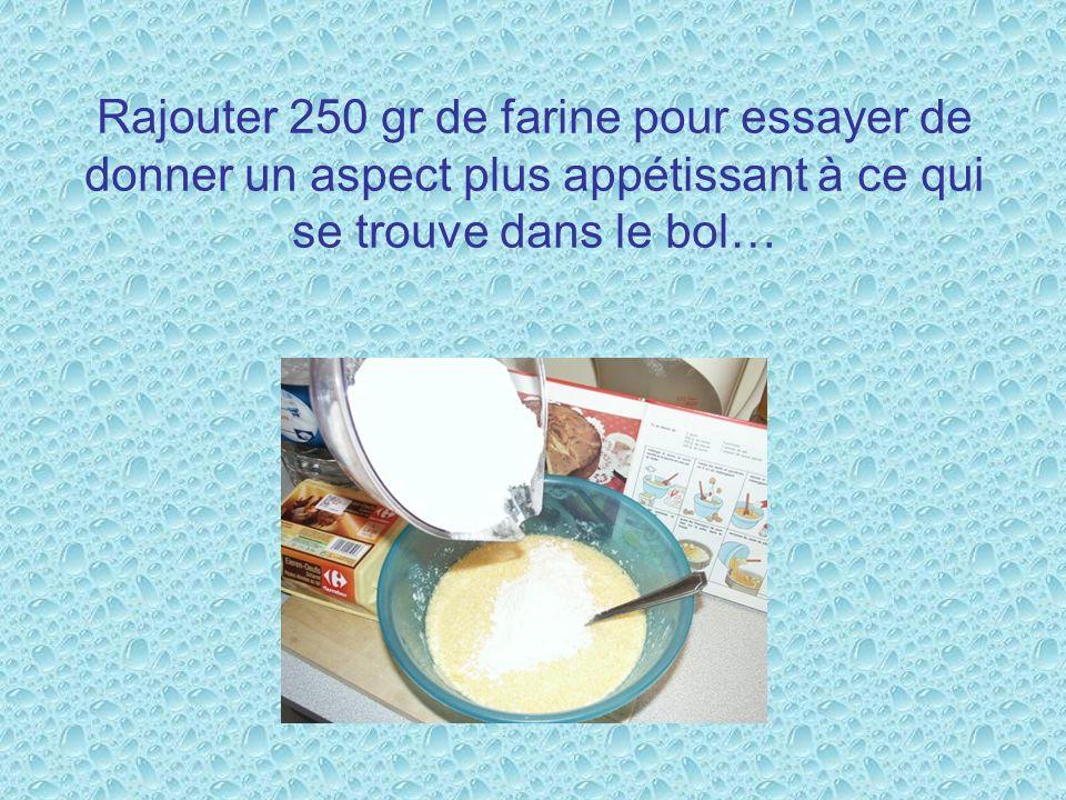Rajouter 250 gr de farine pour essayer de donner un aspect plus appétissant à ce qui se trouve dans le bol…
