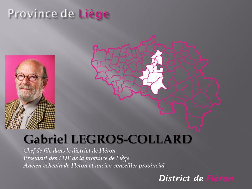 District de Fléron Gabriel LEGROS-COLLARD Chef de file dans le district de Fléron Président des FDF de la province de Liège Ancien échevin de Fléron e