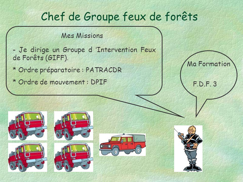 Chef de Groupe feux de forêts Mes Missions Ma Formation F.D.F.