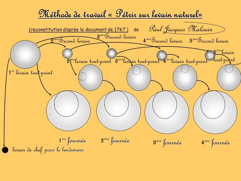 Méthode de travail « Pétrir sur levain naturel». (reconstitution daprès le document de 1767 ) de Paul Jacques Malouin 1 er levain tout-point 2 ème Sec