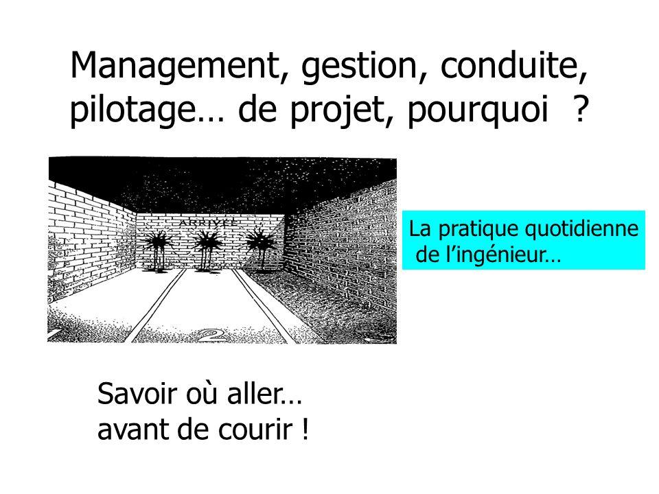 Management, gestion, conduite, pilotage… de projet, pourquoi .