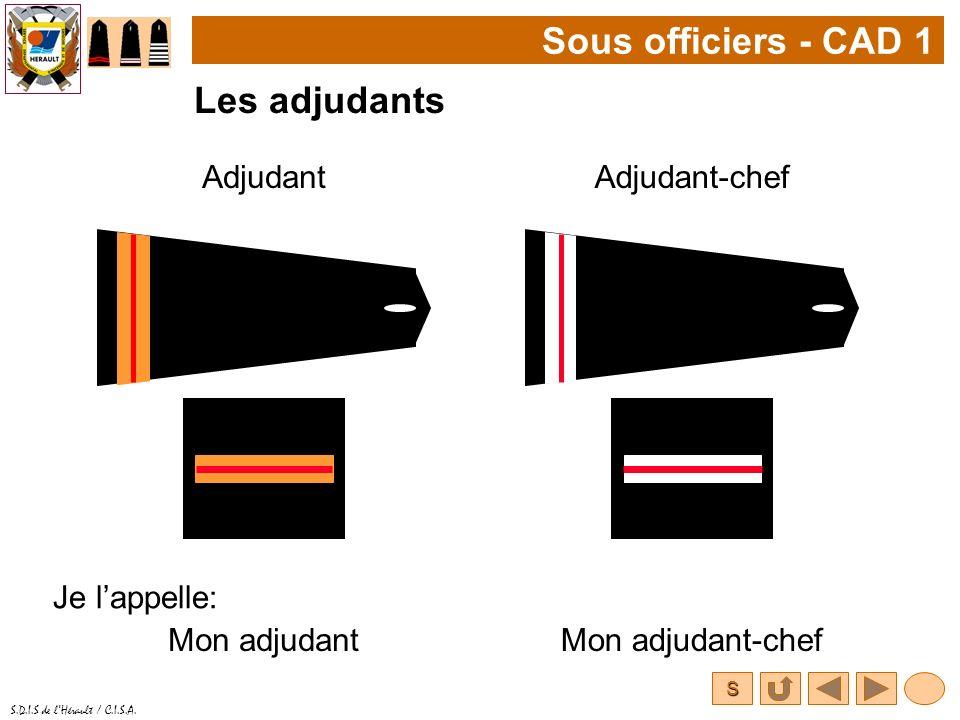 S S.D.I.S de lHérault / C.I.S.A. Sous officiers - CAD 1 Les adjudants AdjudantAdjudant-chef Je lappelle: Mon adjudantMon adjudant-chef