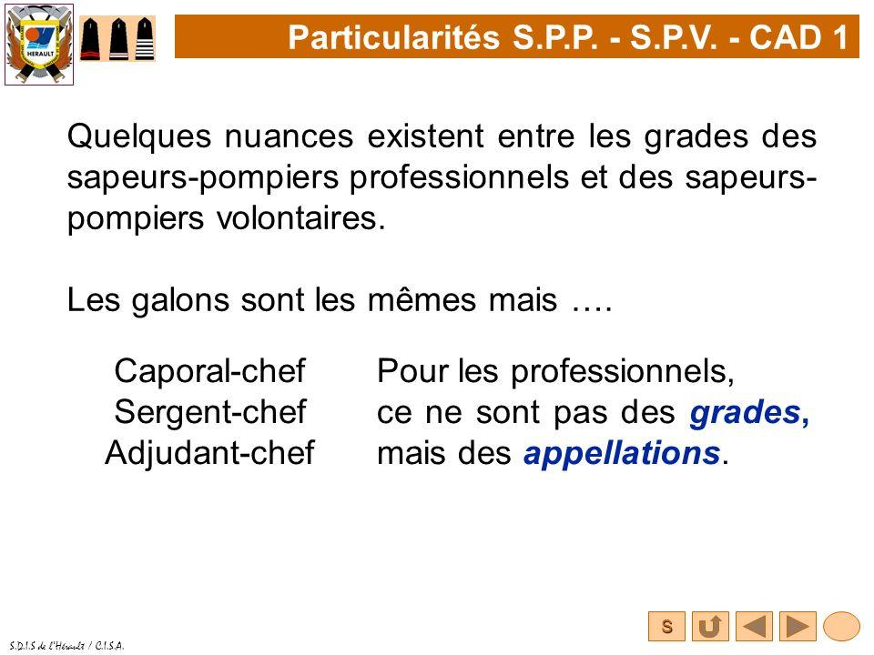 S S.D.I.S de lHérault / C.I.S.A. Quelques nuances existent entre les grades des sapeurs-pompiers professionnels et des sapeurs- pompiers volontaires.