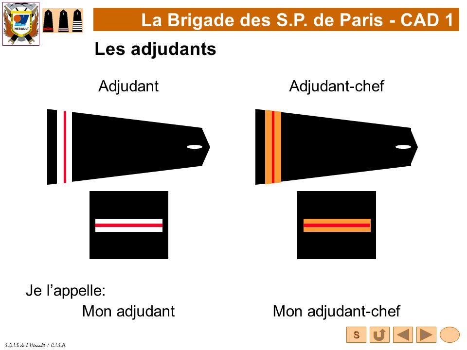S S.D.I.S de lHérault / C.I.S.A. La Brigade des S.P. de Paris - CAD 1 Les adjudants AdjudantAdjudant-chef Je lappelle: Mon adjudantMon adjudant-chef
