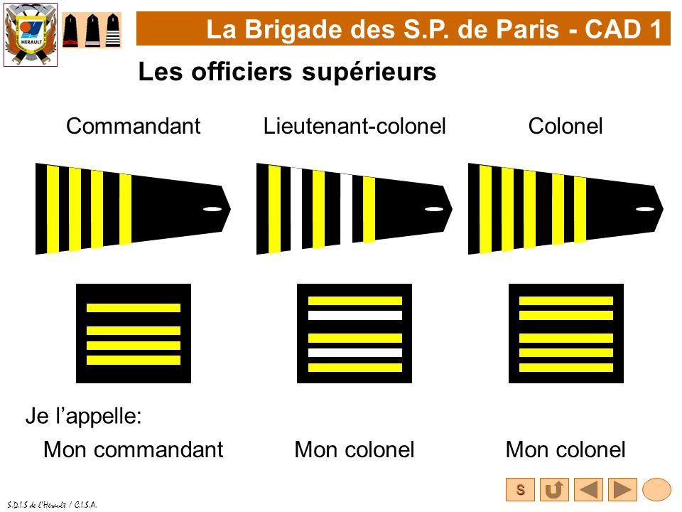 S S.D.I.S de lHérault / C.I.S.A. La Brigade des S.P. de Paris - CAD 1 Les officiers supérieurs CommandantColonel Je lappelle: Lieutenant-colonel Mon c