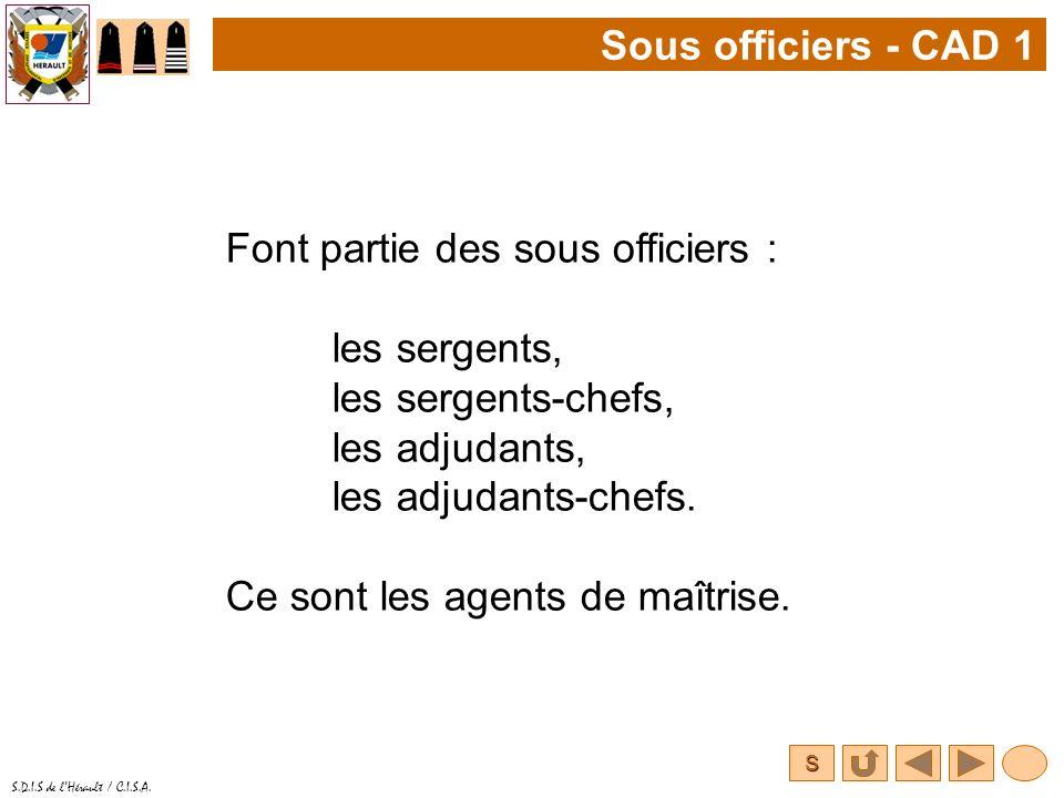 S S.D.I.S de lHérault / C.I.S.A. Sous officiers - CAD 1 Font partie des sous officiers : les sergents, les sergents-chefs, les adjudants, les adjudant