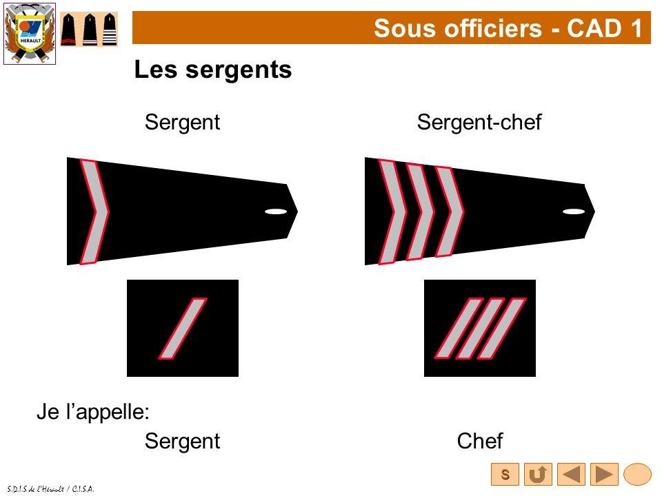S S.D.I.S de lHérault / C.I.S.A. Sous officiers - CAD 1 Les sergents SergentSergent-chef Je lappelle: SergentChef