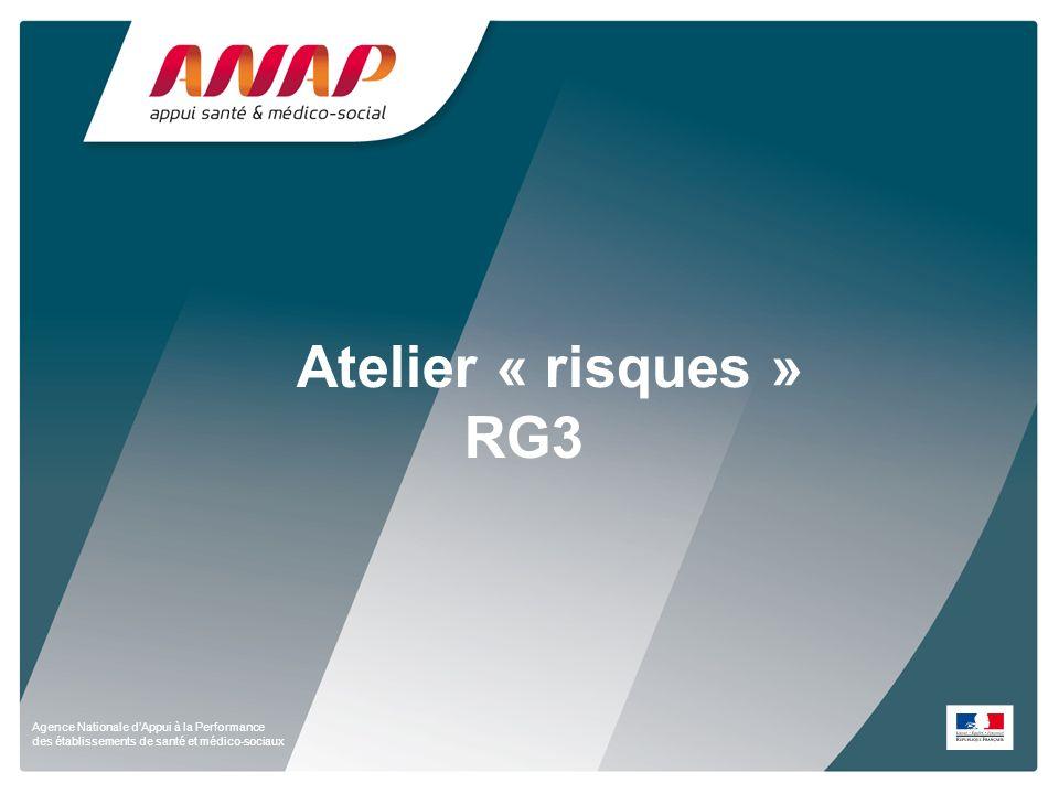 Agence Nationale dAppui à la Performance des établissements de santé et médico-sociaux Atelier « risques » RG3