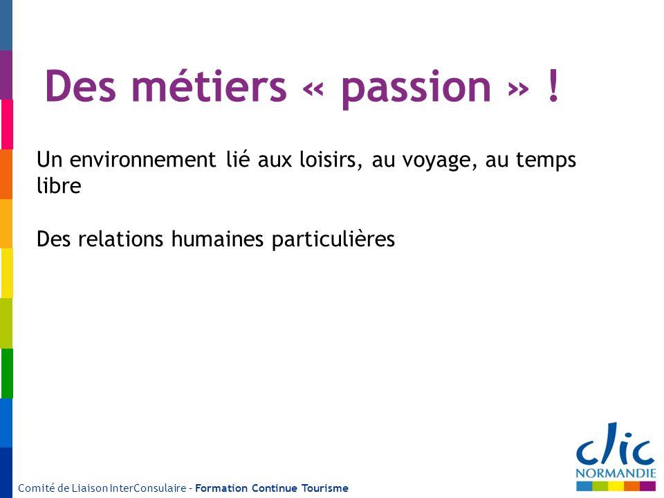 Comité de Liaison InterConsulaire – Formation Continue Tourisme Des métiers « passion » ! Un environnement lié aux loisirs, au voyage, au temps libre