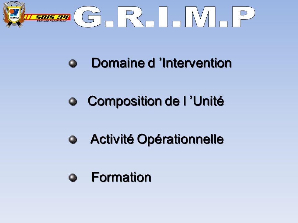 Domaine d Intervention Composition de l Unité Activité Opérationnelle Formation