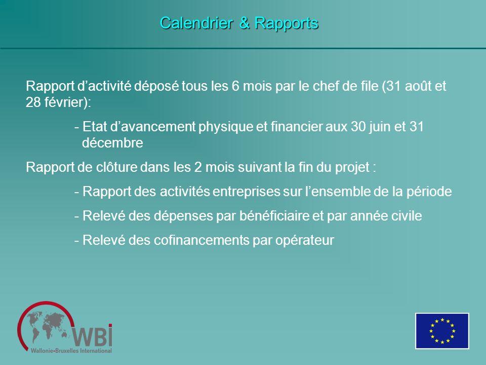Calendrier & Rapports Rapport dactivité déposé tous les 6 mois par le chef de file (31 août et 28 février): - Etat davancement physique et financier a