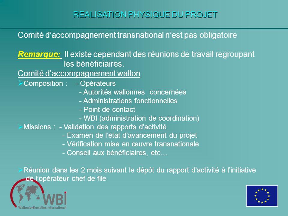 REALISATION PHYSIQUE DU PROJET Comité daccompagnement transnational nest pas obligatoire Remarque: Il existe cependant des réunions de travail regroup