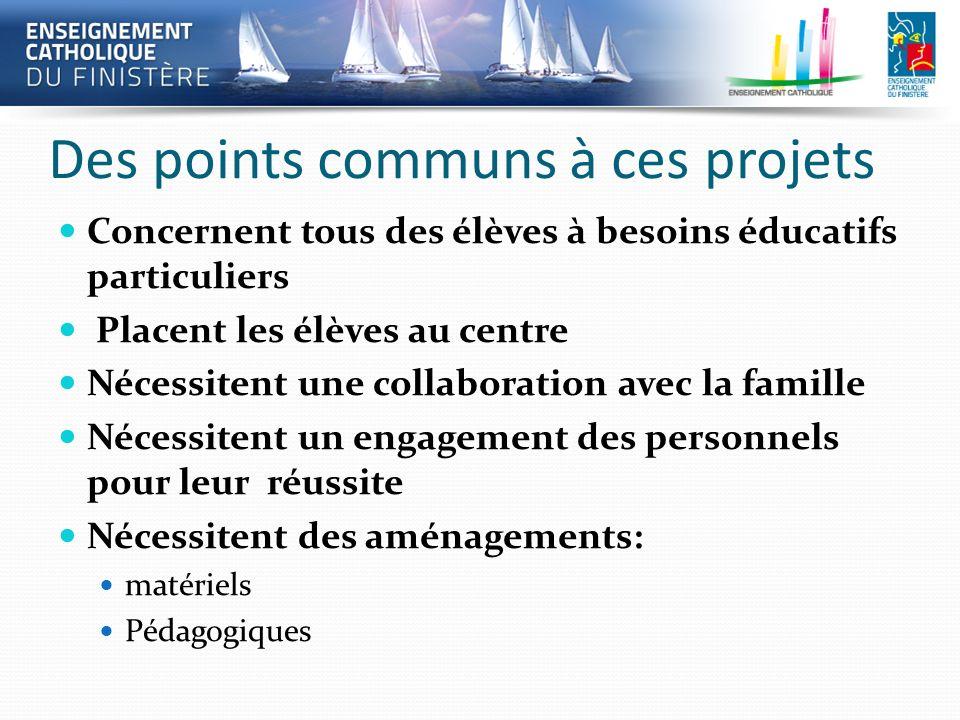 Des points communs à ces projets Concernent tous des élèves à besoins éducatifs particuliers Placent les élèves au centre Nécessitent une collaboratio