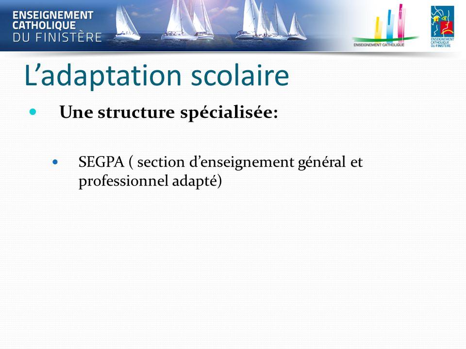 Ladaptation scolaire Une structure spécialisée: SEGPA ( section denseignement général et professionnel adapté)