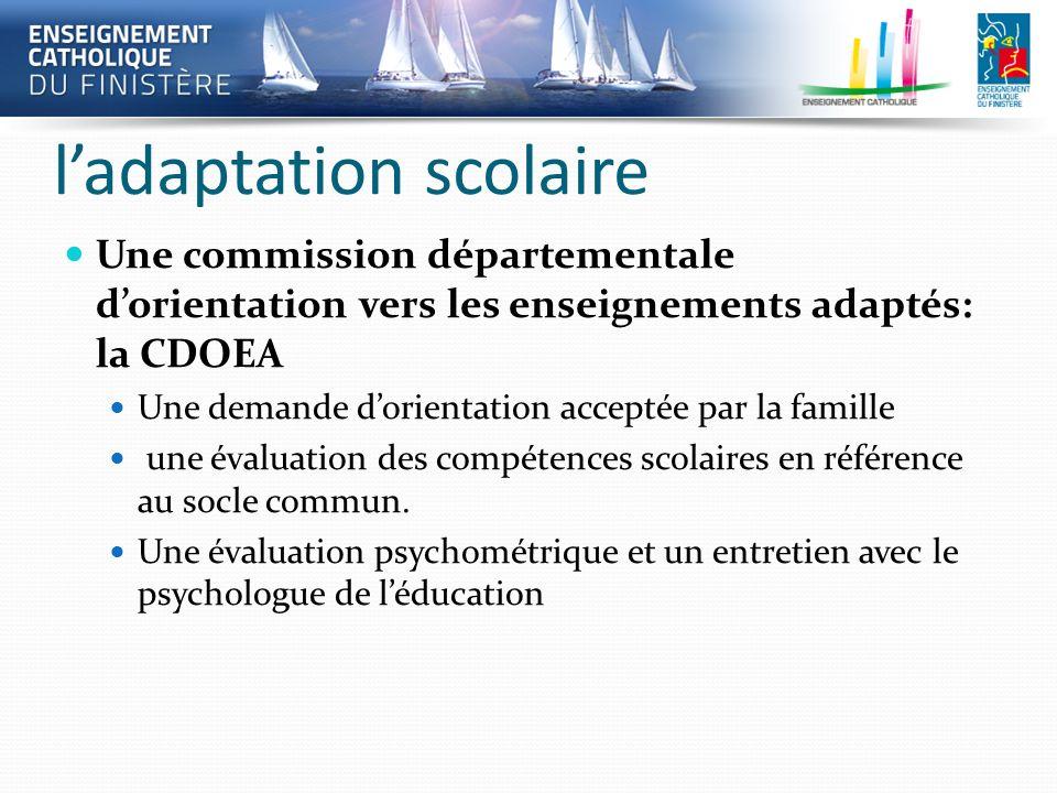 ladaptation scolaire Une commission départementale dorientation vers les enseignements adaptés: la CDOEA Une demande dorientation acceptée par la fami