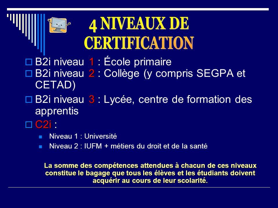 1 B2i niveau 1 : École primaire 2 B2i niveau 2 : Collège (y compris SEGPA et CETAD) 3 B2i niveau 3 : Lycée, centre de formation des apprentis C2i C2i