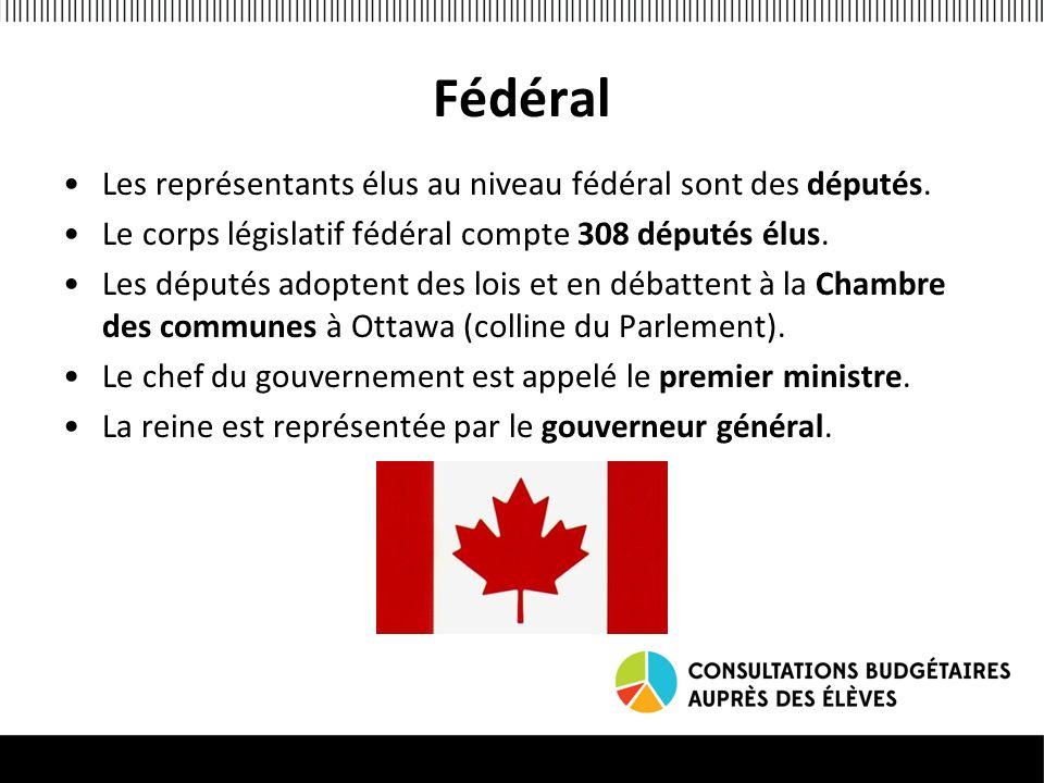 Fédéral Les représentants élus au niveau fédéral sont des députés.