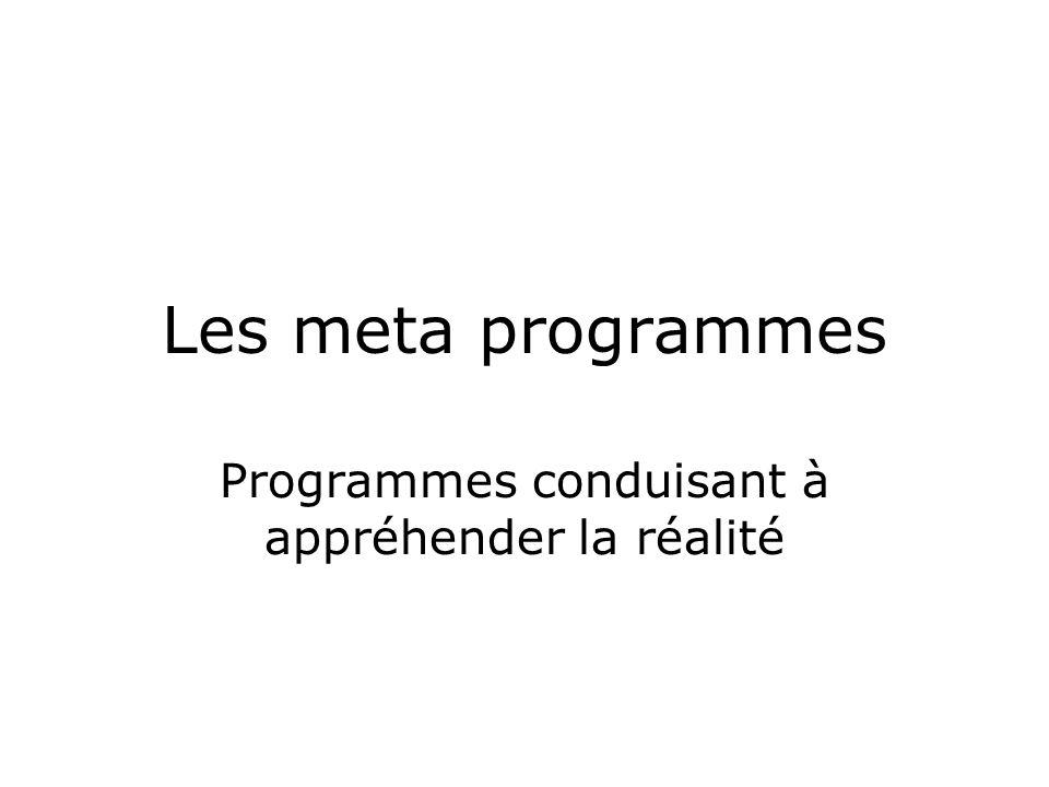 Les meta programmes Programmes conduisant à appréhender la réalité