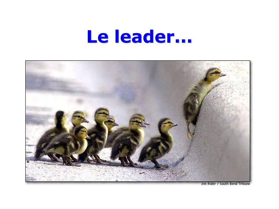 Le leader...