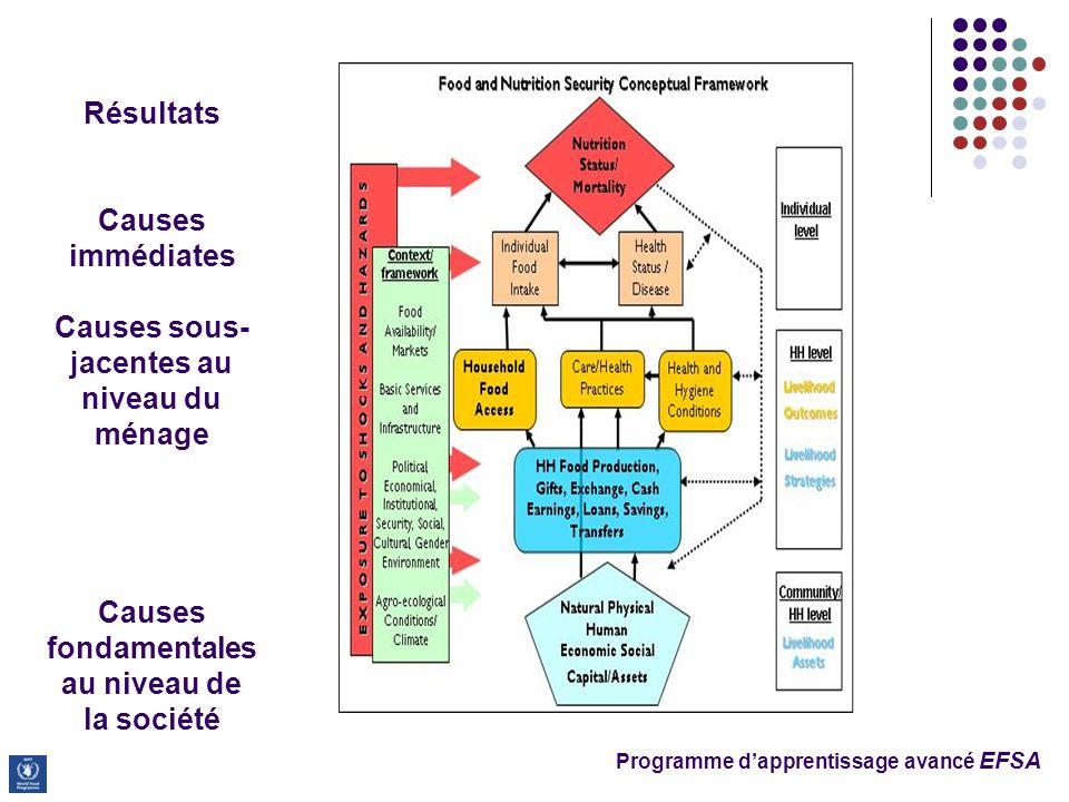 Programme dapprentissage avancé EFSA Résultats Causes immédiates Causes sous- jacentes au niveau du ménage Causes fondamentales au niveau de la sociét
