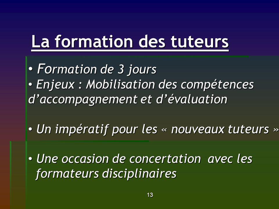 13 La formation des tuteurs La formation des tuteurs Fo rmation de 3 jours Fo rmation de 3 jours Enjeux : Mobilisation des compétences daccompagnement