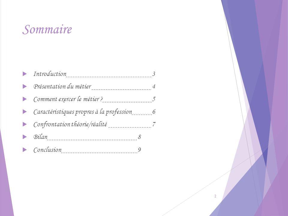 Sommaire Introduction3 Présentation du métier 4 Comment exercer le métier ?5 Caractéristiques propres à la profession6 Confrontation théorie/réalité7