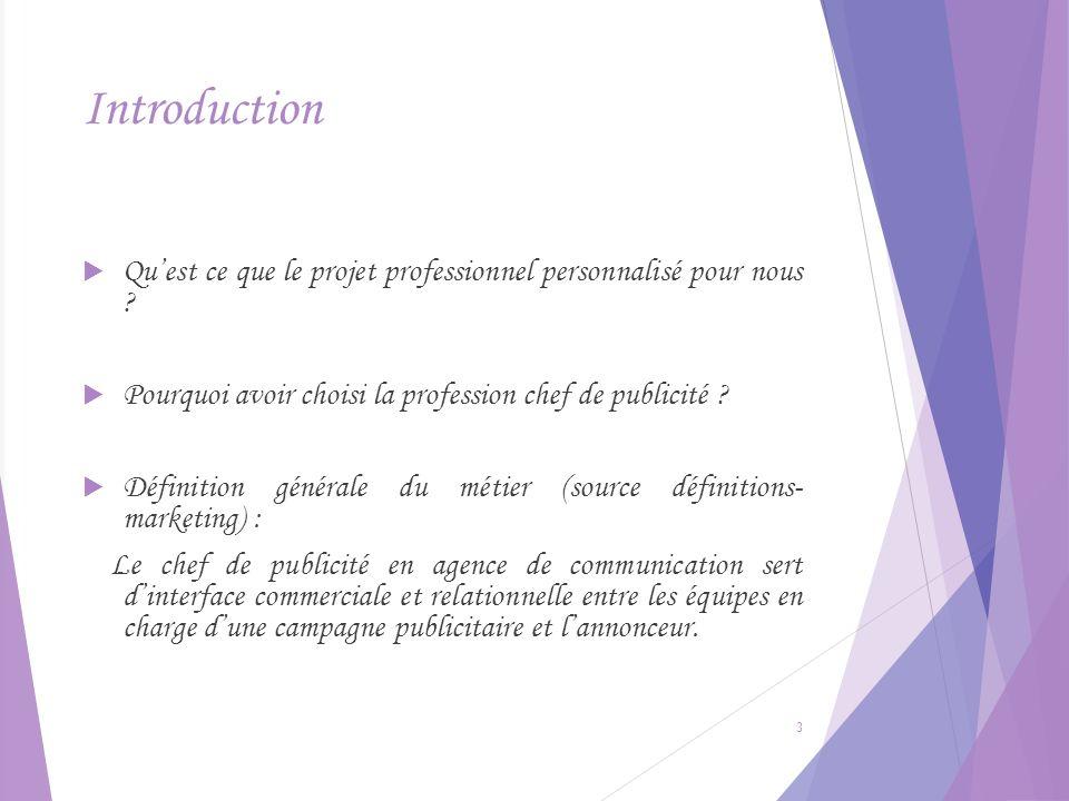 Introduction Quest ce que le projet professionnel personnalisé pour nous ? Pourquoi avoir choisi la profession chef de publicité ? Définition générale