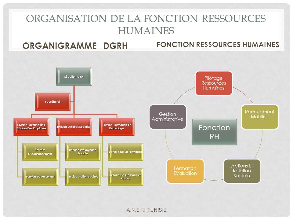 ORGANISATION DE LA FONCTION RESSOURCES HUMAINES ORGANIGRAMME DGRH Direction GRH Division Gestion Des Affaires Des Employés ServiceOrdonnancement Servi