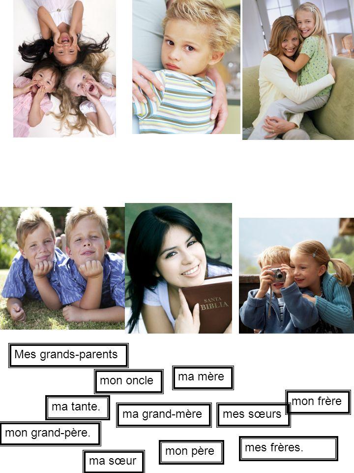 mes frères. mon grand-père. ma sœur ma mère Mes grands-parents mon oncle mes sœurs ma tante. mon frère mon père ma grand-mère