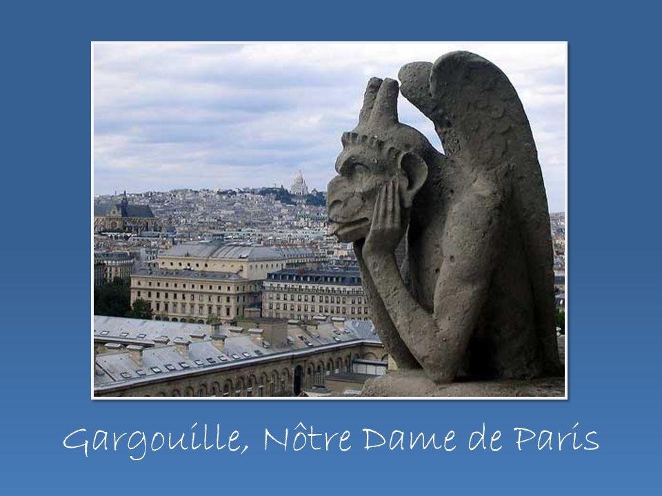 Gargouille, Nôtre Dame de Paris