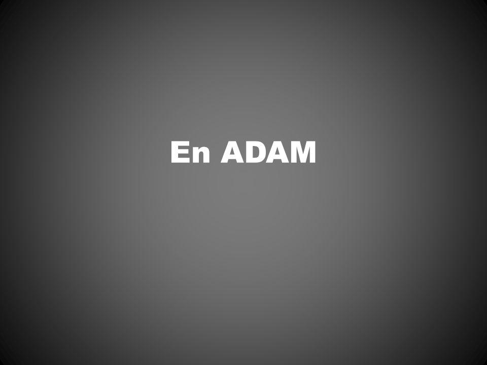 En ADAM