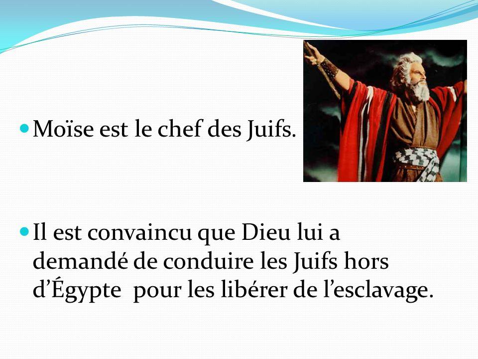 Moïse est le chef des Juifs. Il est convaincu que Dieu lui a demandé de conduire les Juifs hors dÉgypte pour les libérer de lesclavage.