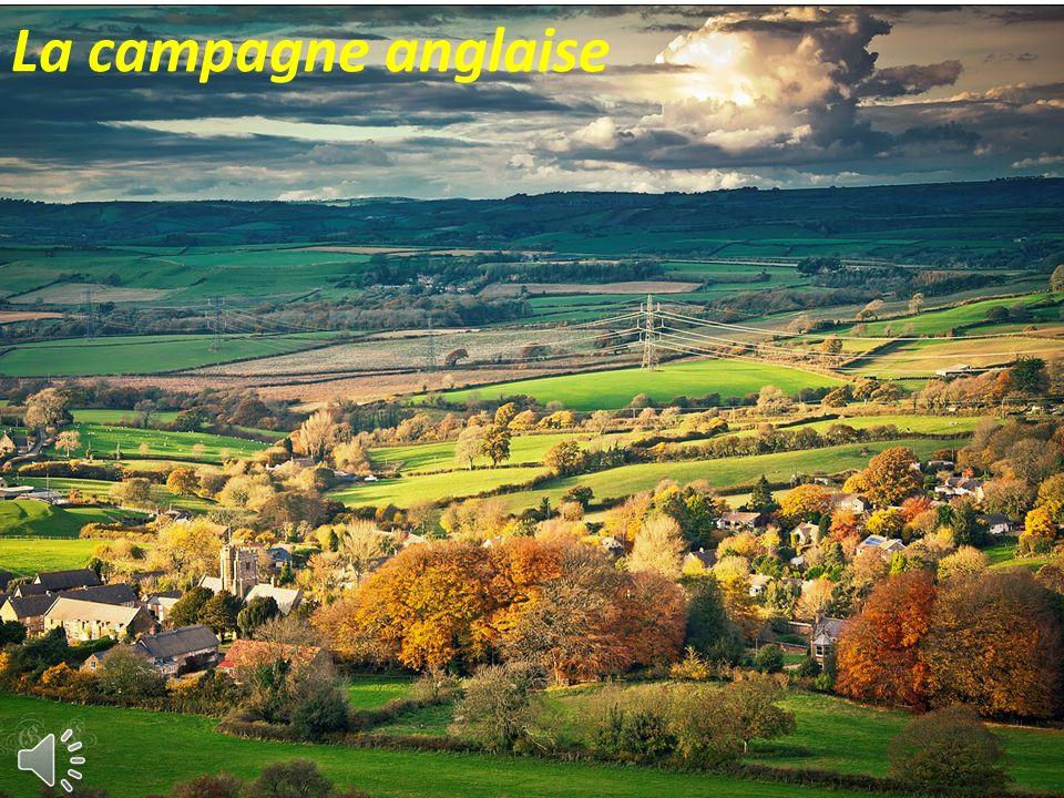 L Angleterre ne dispose que de faibles sommets LEcosse se caractérise par de vastes étendues, Le Pays de Galles est lui, beaucoup plus montagneux. Cel