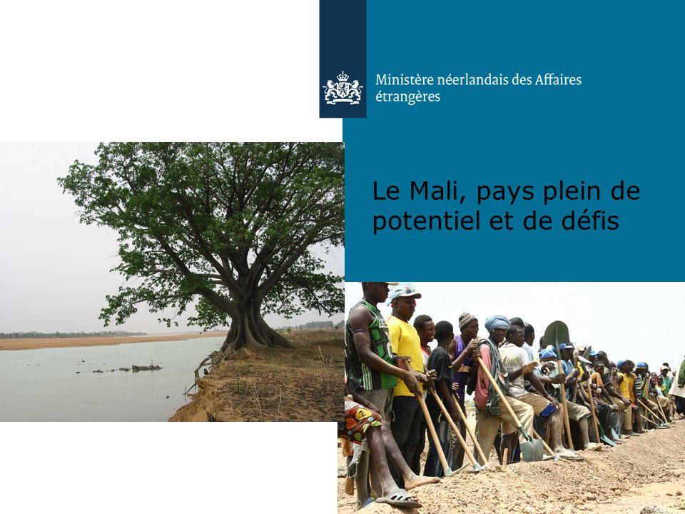 Le Mali, pays plein de potentiel et de défis