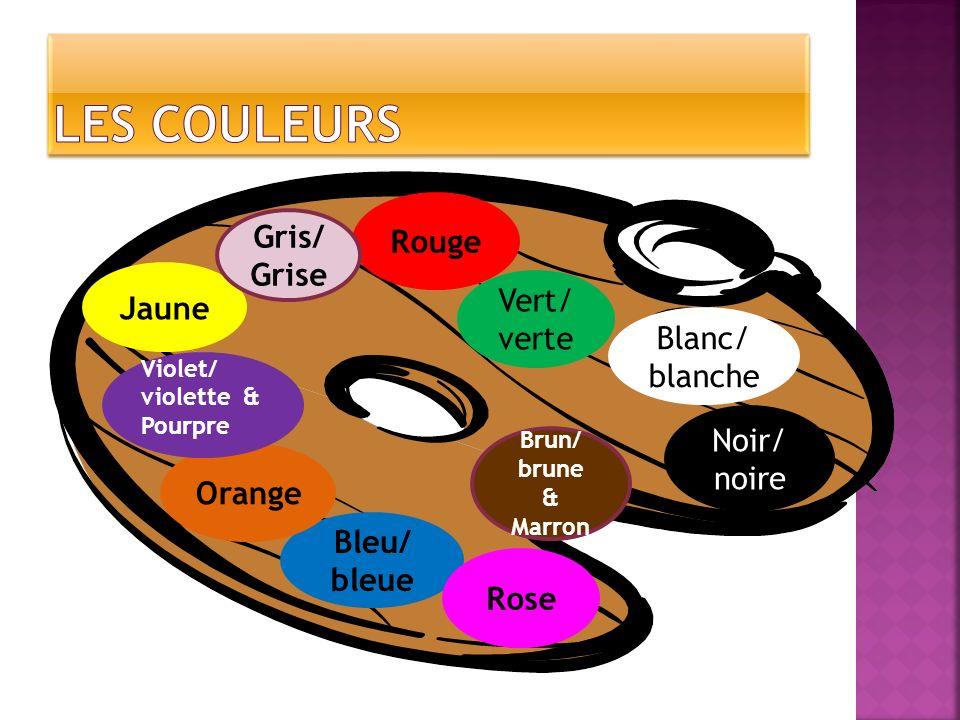 Bleu/ bleue Orange Violet/ violette & Pourpre Jaune Rouge Vert/ verte Rose Blanc/ blanche Noir/ noire Brun/ brune & Marron Gris/ Grise