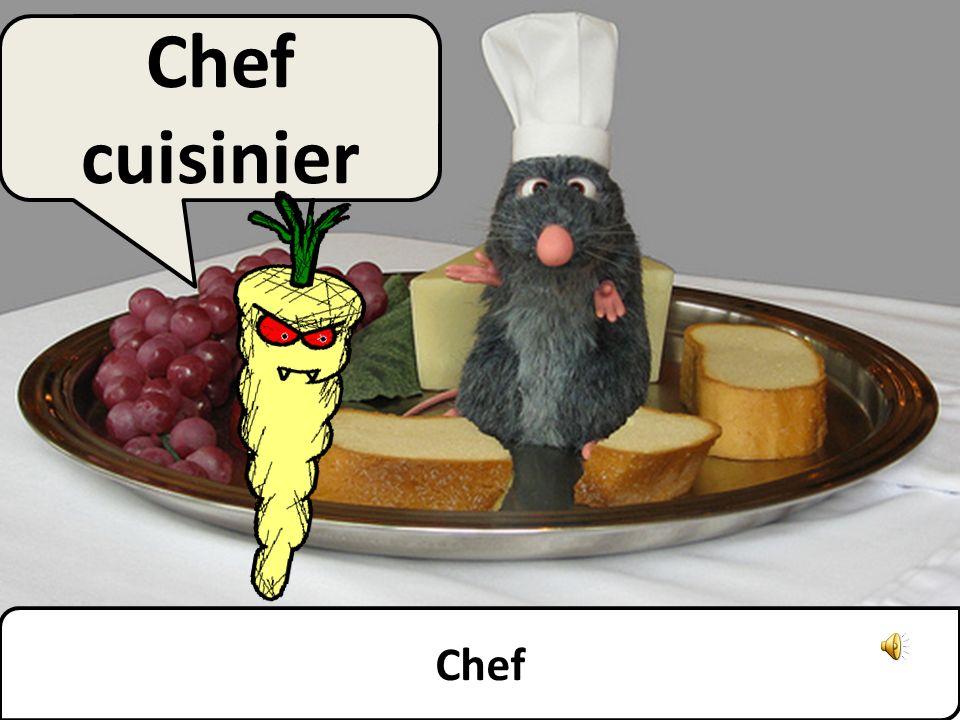 Chef Chef cuisinier