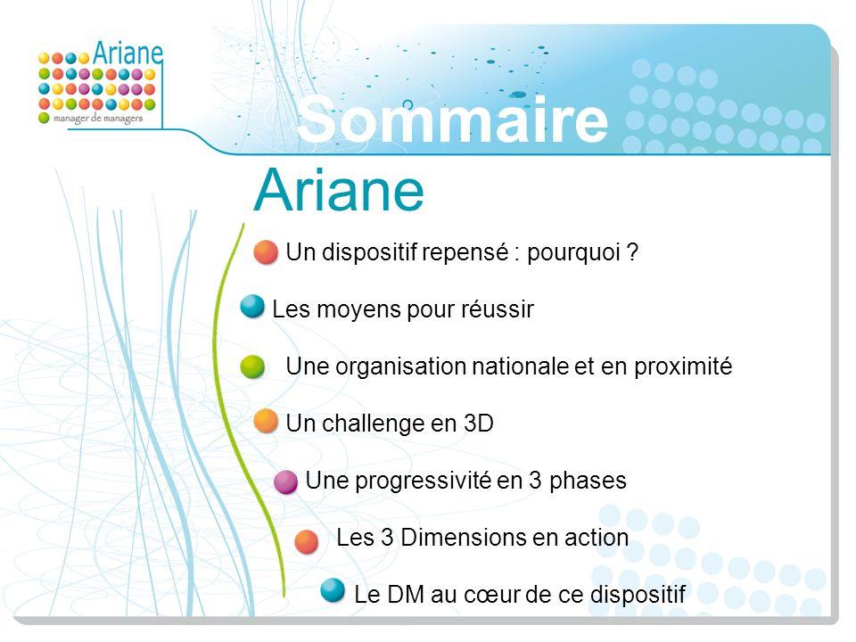 Sommaire Ariane Un dispositif repensé : pourquoi ? Les moyens pour réussir Une organisation nationale et en proximité Un challenge en 3D Une progressi