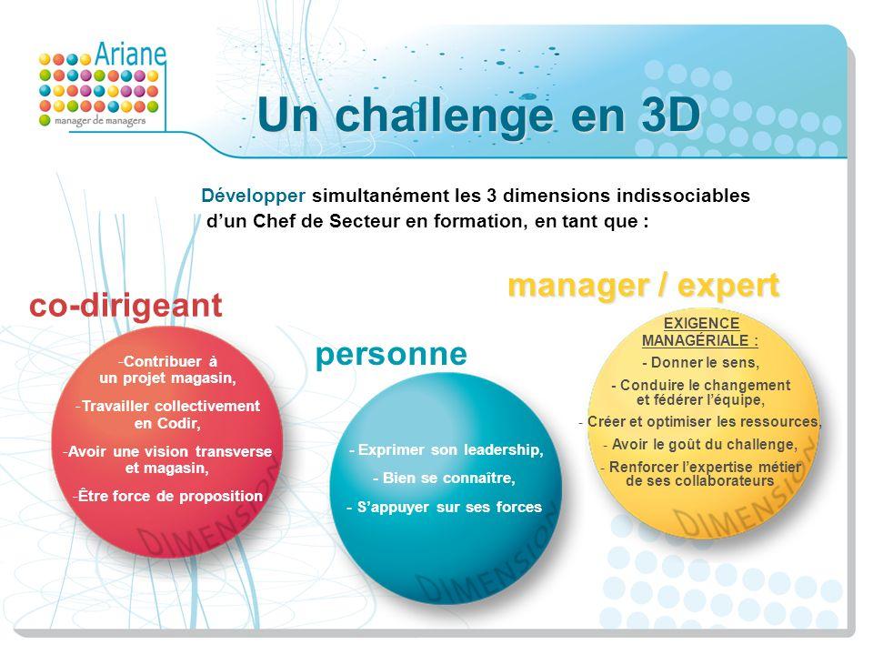 Un challenge en 3D Développer simultanément les 3 dimensions indissociables dun Chef de Secteur en formation, en tant que : -Contribuer à un projet ma