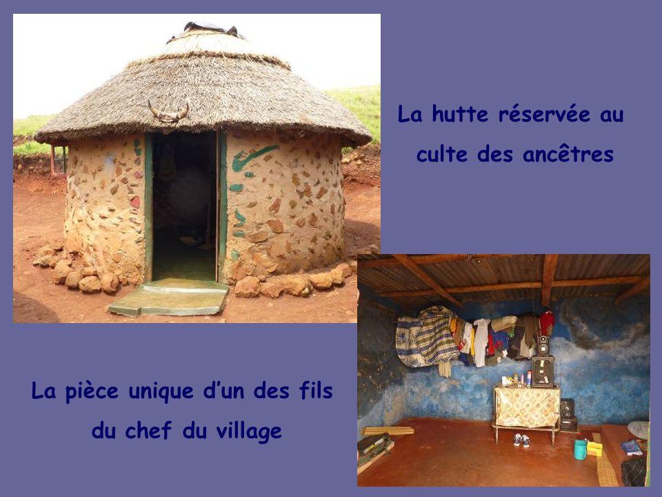 Les huttes traditionnelles de la communauté des Nompodo du Zoulouland Découverte du « kraal », mode de vie et coutumes par le chef de village